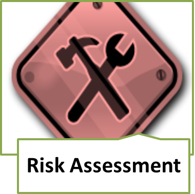 meaningful use security risk analysis scope
