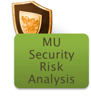 meaningful use security risk analysis hipaa compliance consulting meaningful use security